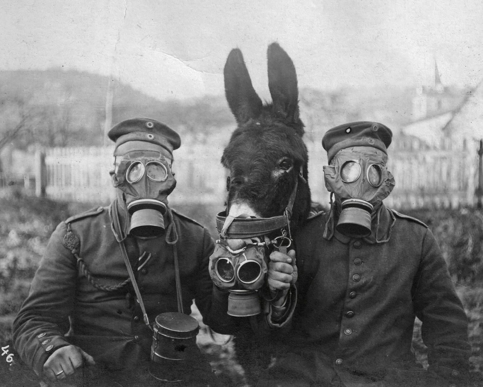 A group of guards wearing masks during a pandemic in the early 20th century. It is assumed to be during the Spanish flu pandemic